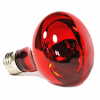 Infrared Lamp 75W