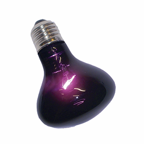 Purple Night Lamp 60W